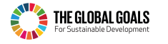 The Global Goals Logo - horizontal